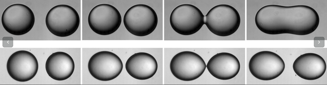 A controled noncoalescence of water droplets in oil manipulating with an externally applied electric field